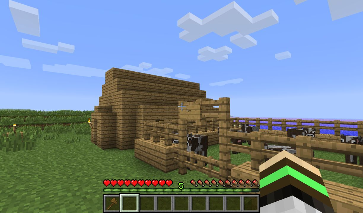 minecraft application requires java runtime environment