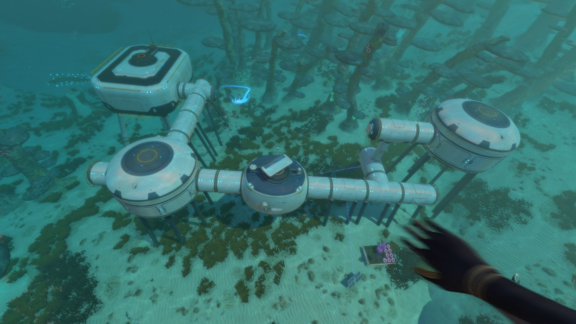 Subnautica Review New Game Network Setup the game to initialize the options based on the. subnautica review new game network