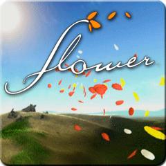 Flower box art